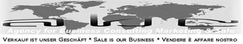- agency for business consulting